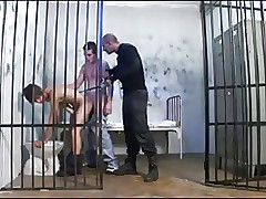 free gay doggie style sex